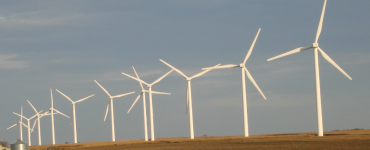 Row of wind turbines on a farm